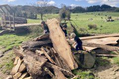 live-egde-family-children-climbing-wood